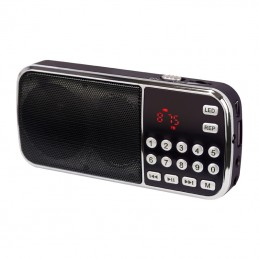 RADIO PORTABLE FM...